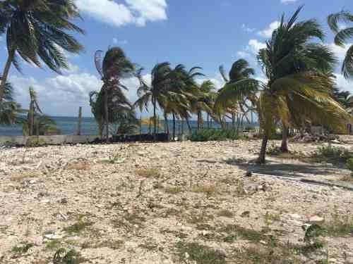 venta de terreno de 0.5 hectáreas para desarrollo   cancun