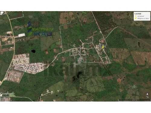 venta de terreno de 422.88 m² en monte grande, tuxpan, ver, se encuentra ubicado en la calle lázaro cárdenas a unos cuantos metros del campo de fútbol, cuenta con 17.90 m de frente por 23.62 m de fon