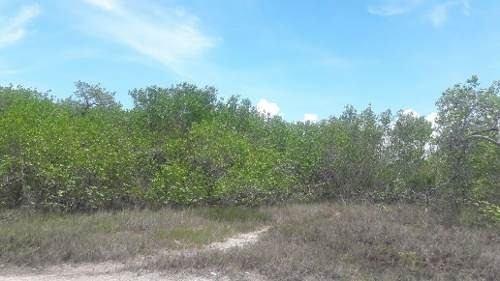 venta de terreno de 80 hectáreas a 2km del arco bicentenario
