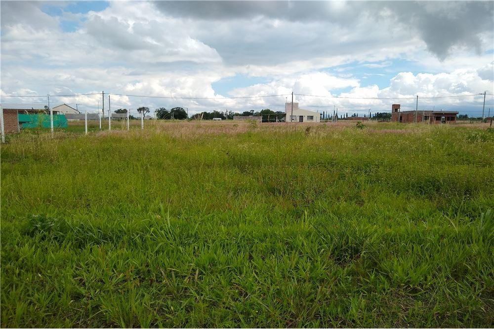 venta de terreno en ampl. el mollar ii - 557 m2