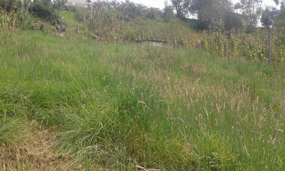 venta de terreno en baños-cuenca via a minas