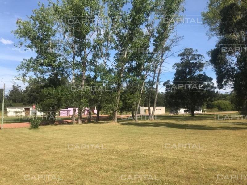 venta de terreno en barrio privado verdemora, punta ballena- ref: 28732