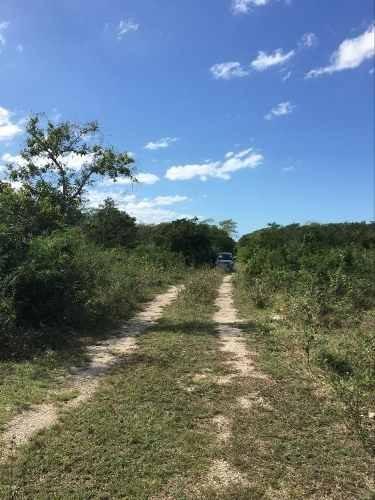 venta de terreno en carretera merida - progreso en el paraiso