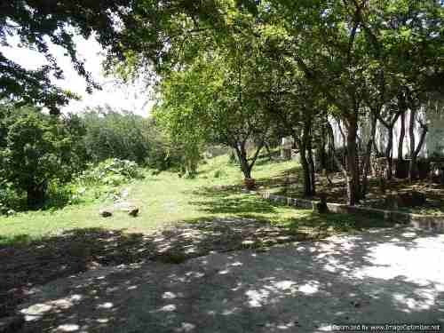 venta de terreno en el centro de xochitepec, 6,000 m2 clave tt629