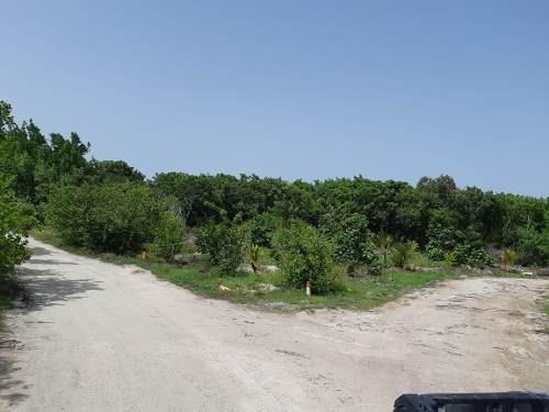 venta de terreno en holbox 350m2 quintana roo