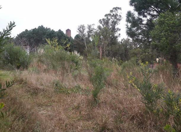 venta de terreno en la floresta sobre ruta interbalnearia