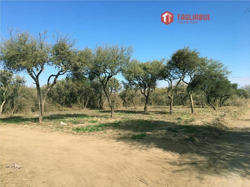 venta de terreno en la florida merlo junin san luis
