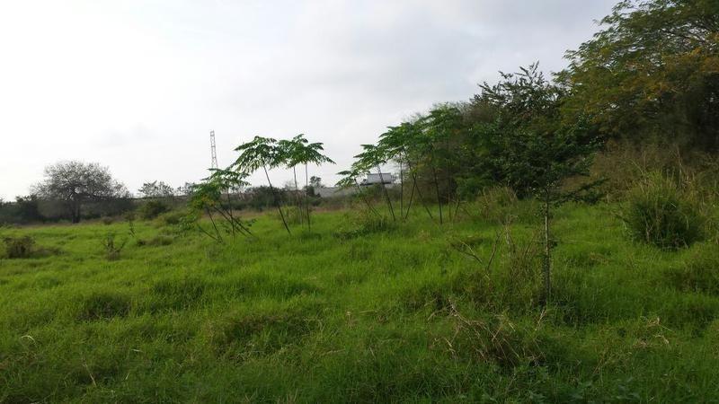 venta de terreno en pánuco veracruz, calentadores ii, carr.tampico-valles