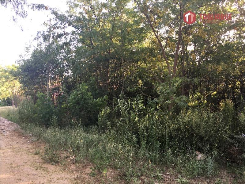 venta de terreno en piedra blanca junin san luis