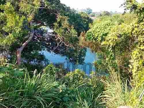venta de terreno en tuxpan ver de 2503 m² en la calle fray servando teresa de mier en la colonia villa rosita, código postal. 92770,  en atractiva ubicación  tiene vegetación, una bonita vista al est