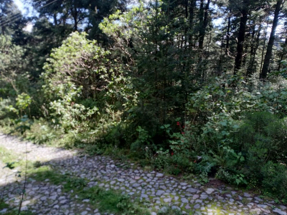 venta de terreno en villa alpina, naucalpan de juarez