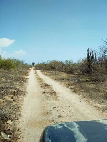 venta de terreno en villas de san fernando