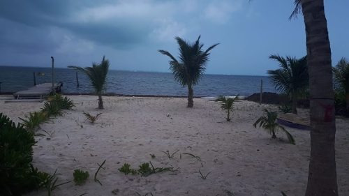venta de terreno en zona costera isla mujeres