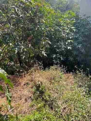 venta de terreno en zona residencial en  paseos del bosque