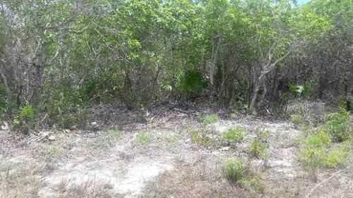 venta de terreno holbox a unos metros de la playa