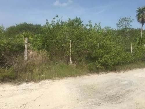 venta de terreno holbox  cerca del mar a 70 m aprox.