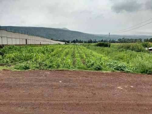 venta de terreno para una vivienda es agricola en mixquic