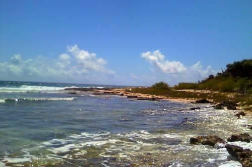 venta de terreno punta allen con 28 mts de frente con playa