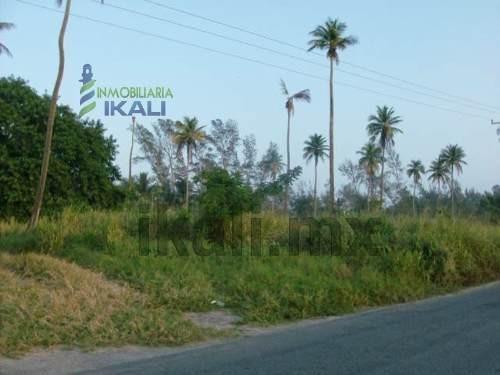 venta de terrenos en la playa de tuxpan veracruz, 1.4 has. se encuentra ubicado rumbo a la termoeléctrica tiene vista al mar son 100 metros a orilla de la carretera y 100 metros de frente al mar, son