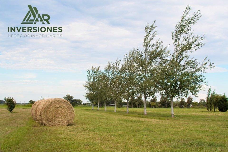 venta de terrenos en - pinares del sur - amplia financiacion - terrenos a partir de 250 m2 -