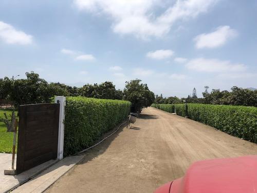 venta de terrenos para casa de campo en huaral