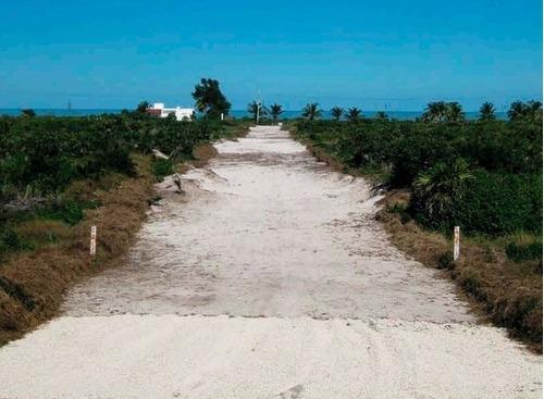 venta de últimos lotes en san benito beach