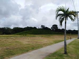 venta espectacular terreno en plp tocumen panama