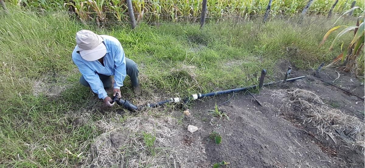 venta hectarea de terreno bajo riego