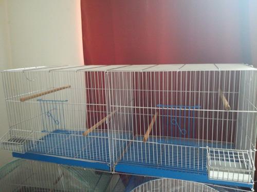 venta jaulas especiales para canarios