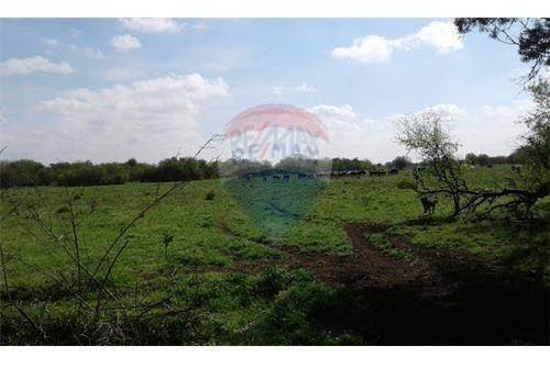 venta lote campo 58 hectáreas  marcos paz ruta 6