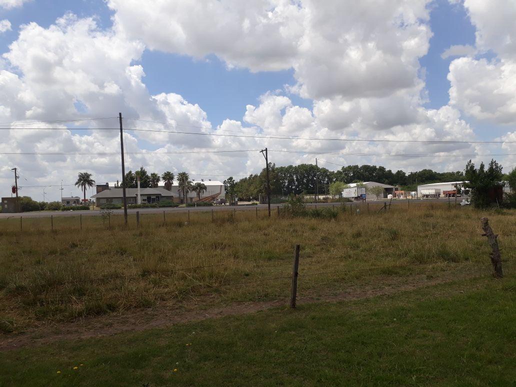 #venta lote de 6154 m2. - ruta nac. 205 próximo autopista