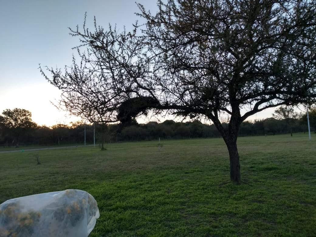venta lote en bella vista, rio ceballos, córdoba