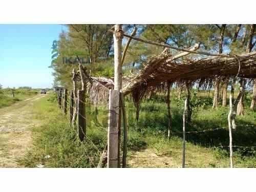 venta lotes 400 m² playa sur tamiahua veracruz. ubicados en la playa sur de tamiahua son varios lotes de 400 m². #ref:ter_1037 - ter_1037 - inmobiliaria ikali