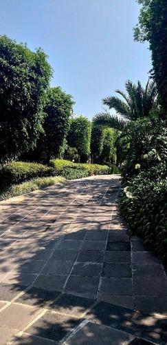 venta preciosa residencia en jardines del pedregal, álvaro obregón, cdmx