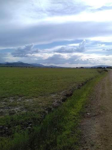 venta precioso terreno de 29,000 mts2, en sabanillas gto.  plano