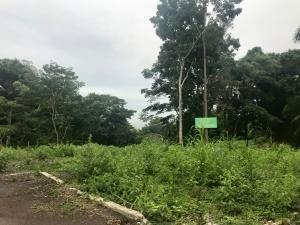 venta privilegiado terreno en albrook panama