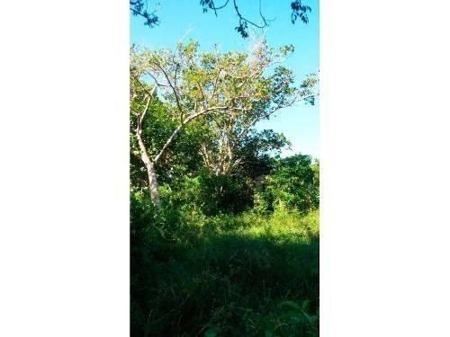 venta rancho 23 hectáreas carretera tuxpan tamiahua km. 40, terreno de 23 hectáreas que se encuentra ubicado en el km 40 de la carretera tuxpan - tamiahua, cuenta con 660 m. de frente a la carretera