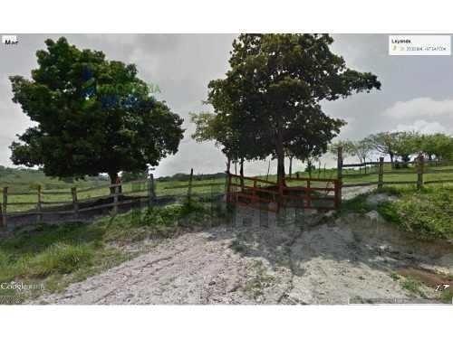 venta rancho 23.4 hectáreas en san marcos tamiahua veracruz, sobre el camino a tampache, está equipado con una casita rústica para el vaquero, corrales, una pista para carreras de caballos con permis