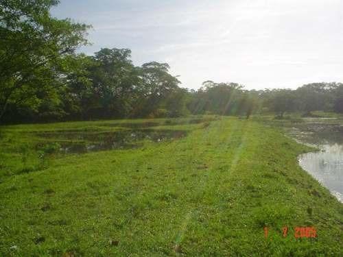 venta - rancho a 12km zona arqueológica palenque