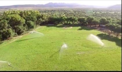 venta rancho en villa de reyes san luis potosí son 100 has.