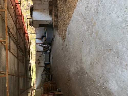 venta rancho ganadero y agostadero por colón qro. 223has