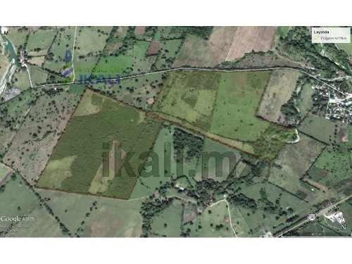 venta rancho o finca ganaderos naranjos veracruz 65.8 hectáreas. se encuentra ubicado cerca del centro de naranjos veracruz, cuenta con 658,000 m² en 2 fracciones divididos por un camino, con acceso