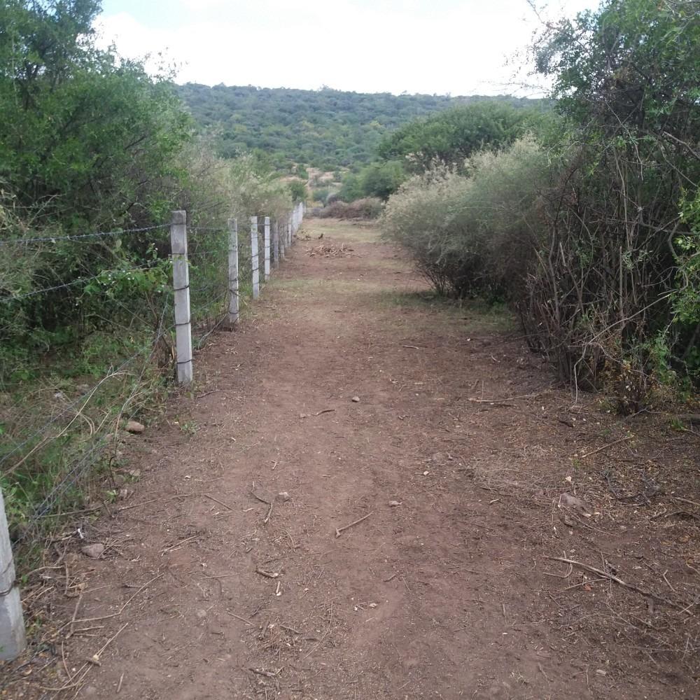 venta terreno 1000m2 en la fuente a 2 cuadras d la carretera