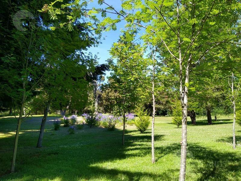 venta terreno 2600 m2   villa la angostura