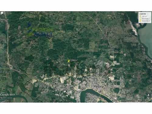 venta terreno 27,289 m² camino a la lajita tuxpan veracruz. en camino al remate, con una superficie plana de 2.73 hectáreas, cuenta con una presa, arboles, como referencia a 1200 metros de la agencia