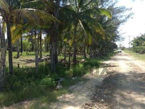 venta terreno 2,800 m² frente laguna tampamachoco tuxpan veracruz se encuentra ubicado a la orilla de la laguna de tampamachoco en la colonia petrolera, entrando por el imss, frente a la mata, cuenta