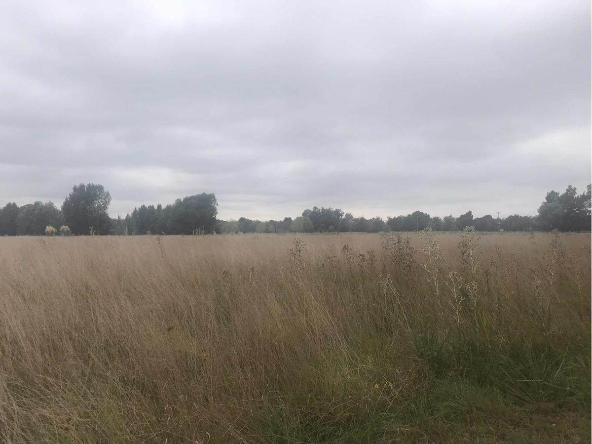 venta terreno  3 hectáreas en club de campo