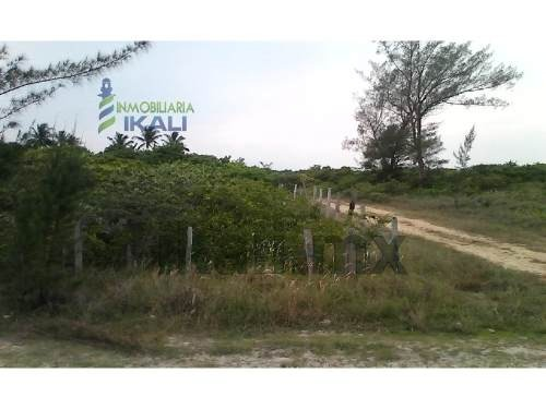 venta terreno 49  hectáreas playa tamiahua veracruz. terreno en venta de 49 hectáreas ubicado frente a la playa, en el municipio de tamiahua veracruz, como referencia entre la playa y la laguna de ta