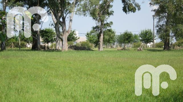 venta terreno  - campos de roca