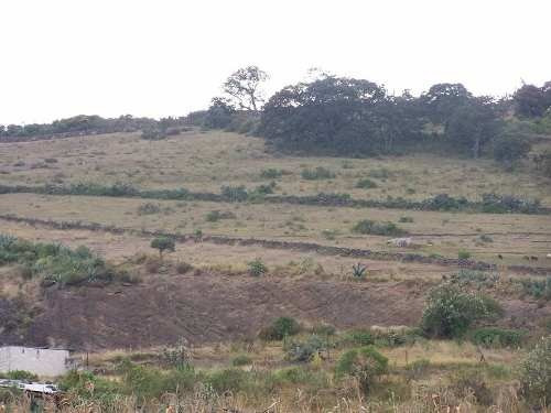 venta terreno comercial palos altos, epitacio huerta michoacan